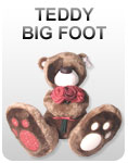 Мишки TEDDY BIG FOOT